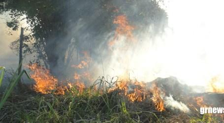 Queimadas continuam devastando áreas verdes em Pará de Minas e Corpo de Bombeiros intensifica fiscalização