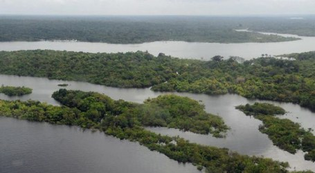 Supremo homologa acordo de R$ 1 bi para Amazônia e R$ 1,6 bi para educação