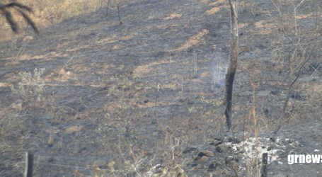 Incêndio de grandes proporções destrói vegetação a espanta animais das Serra das Torres em Pará de Minas