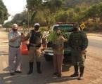 Dia da Árvore é marcado por doações de ipês-mirins a motoristas que trafegavam pela rodovia MG-431