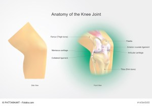 greater rochester orthopaedics offers rehab for knee ligament injuries