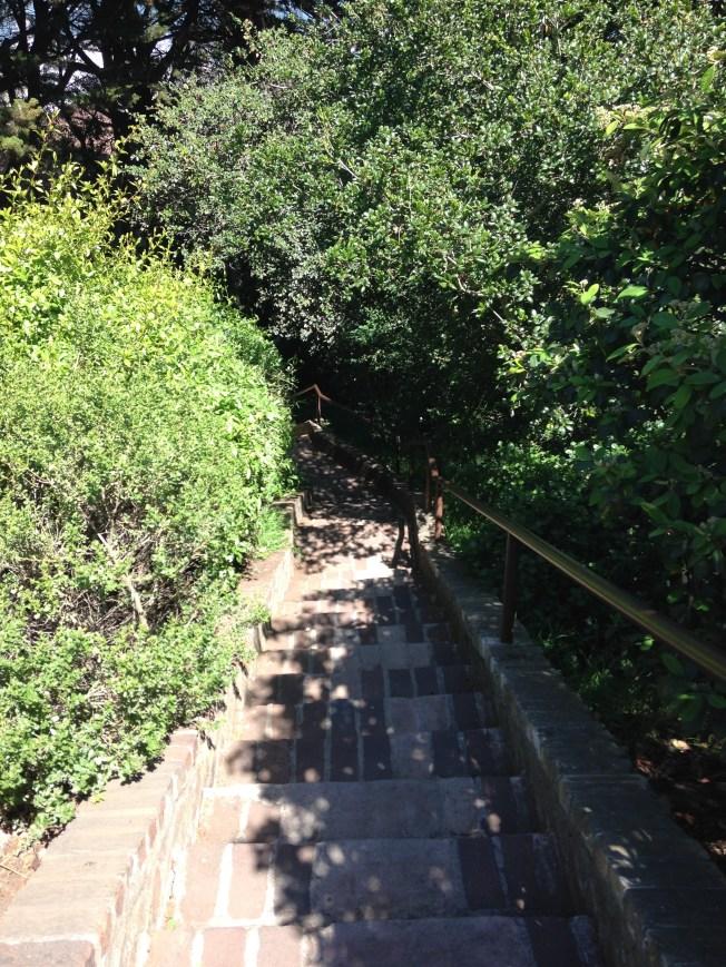 Greenwich steps, Coit tower, San Francisco walk