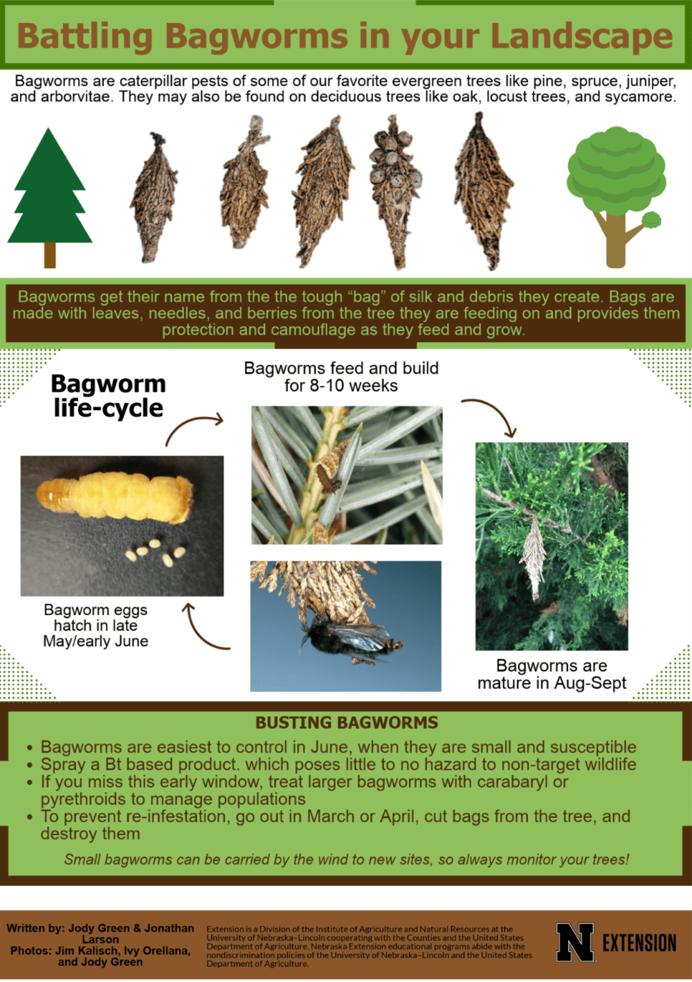 Bagworm Infographic 2018.png