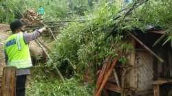 Akibat Angin Kencang Dalam Satu Pekan, 8 Rumah Roboh, 8 Rumah Rusak Berat, 116 Rumah Rusak Ringan
