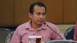 Tanggapi Polemik Banteng Vs Celeng, Abang Baginda Tegaskan Kader PDIP Makin Solid