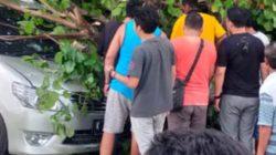 Hadapi Cuaca Ekstrem Warga Wajib Tingkatkan Kewaspadaan, Satu Rumah dan Satu Unit Mobil di Toroh Tertimpa Pohon Rubuh