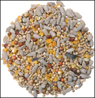 no-mess-seed-mix.jpg