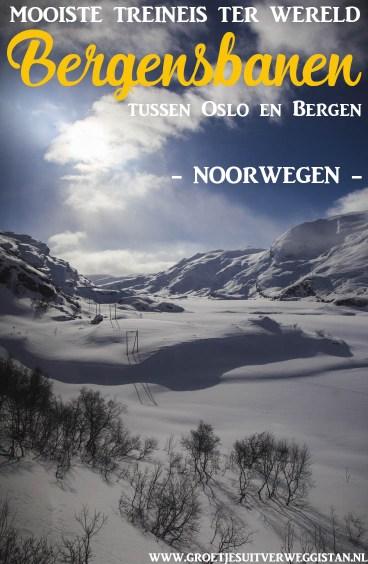 Uitzicht over een mooi besneeuwd landschap vanuit de trein tussen Oslo en Bergen, de mooiste treinreis ter wereld.