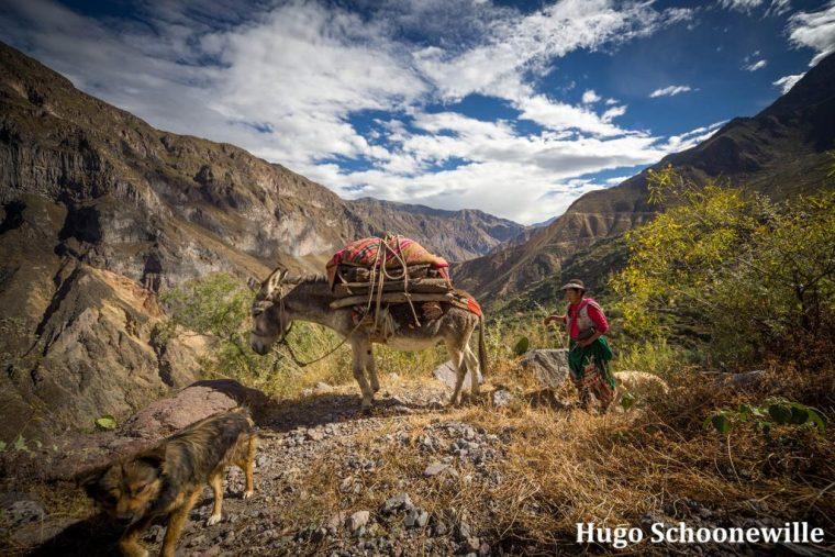 Ezel Colca Canyon