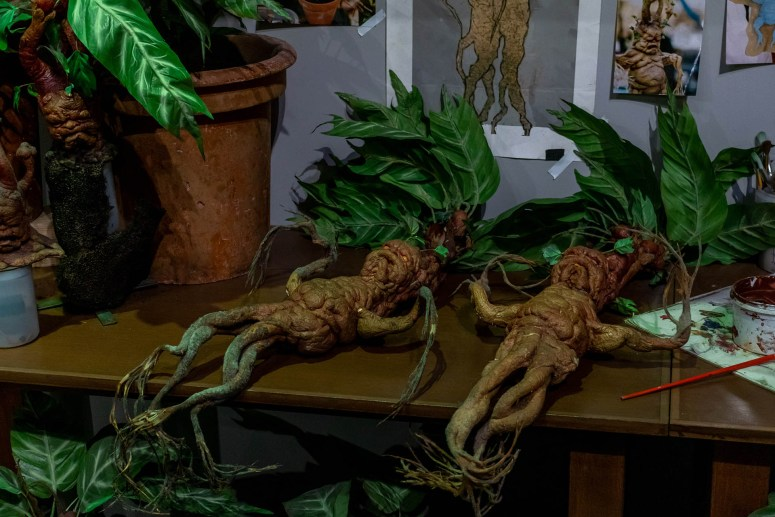De Mandrakes baby's uit de Harry Potter films naast de potten om uit te leggen hoe ze gemaakt worden.