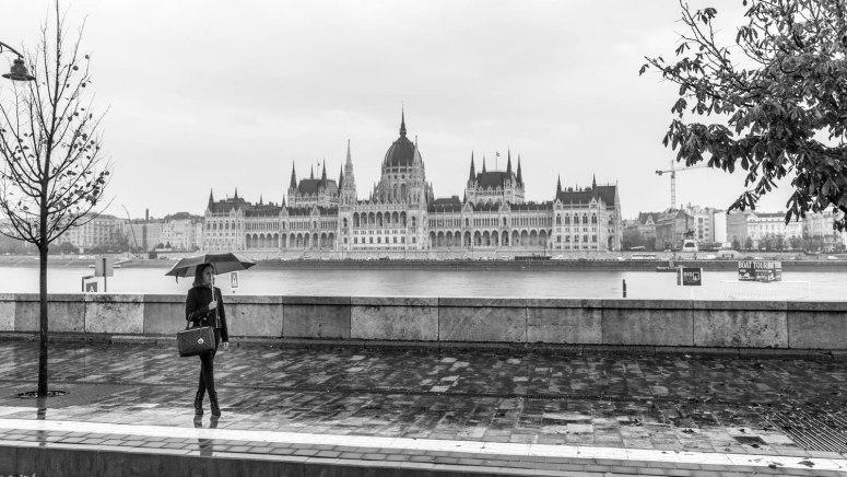 Parlementsgebouw van Boedapest in zwart-wit met vrouw met paraplu