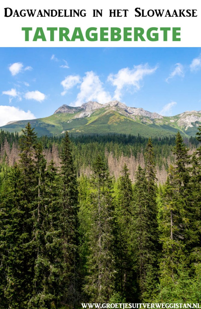 Pinterestafbeelding: Dagwandeling in het Slowaakse Tatragebergte