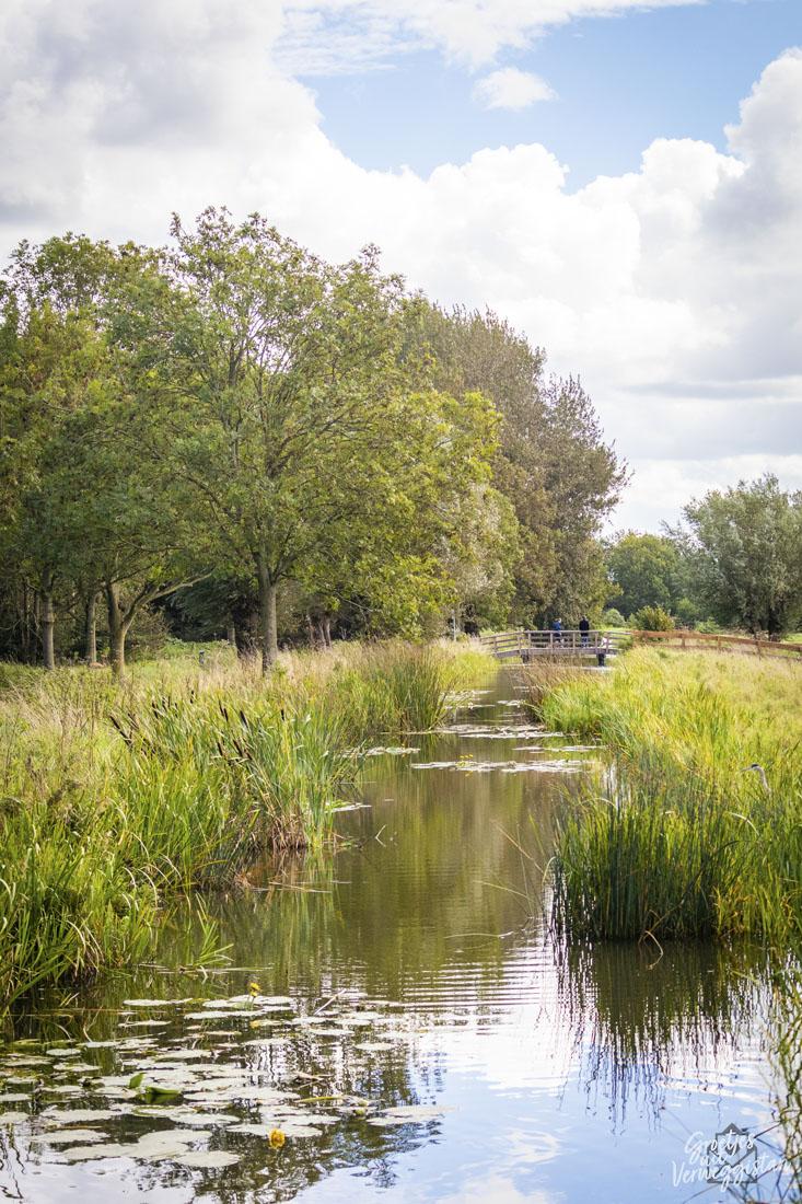 Een watertje in Polderpark Cronesteyn in Leiden