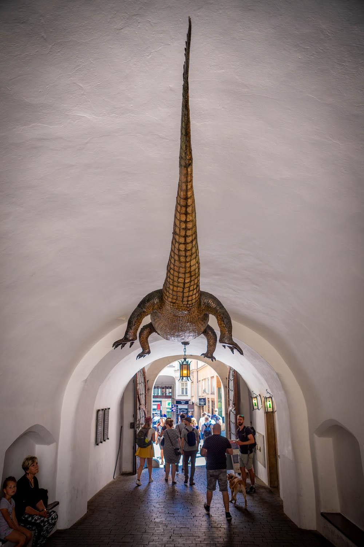 Krokodil aan het plafond van het stadhuis in Brno: het monster van Brno