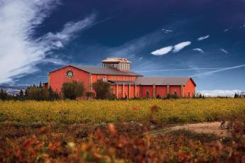 Domeco de Jarauta wijn nu te koop bij Groot Genot