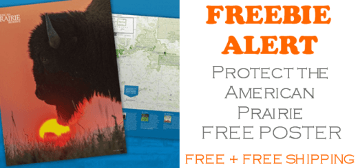 Protect the American Prairie Free Poster