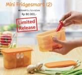 Mini Fridgesmart (2)