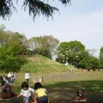 玉川野毛町公園(野球場/テニスコート)