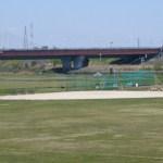 荒川野球場
