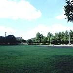 青葉台公園(芝生広場/テニスコート)