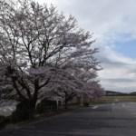 喜連川菖蒲沢公園