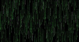 the matrix evidence