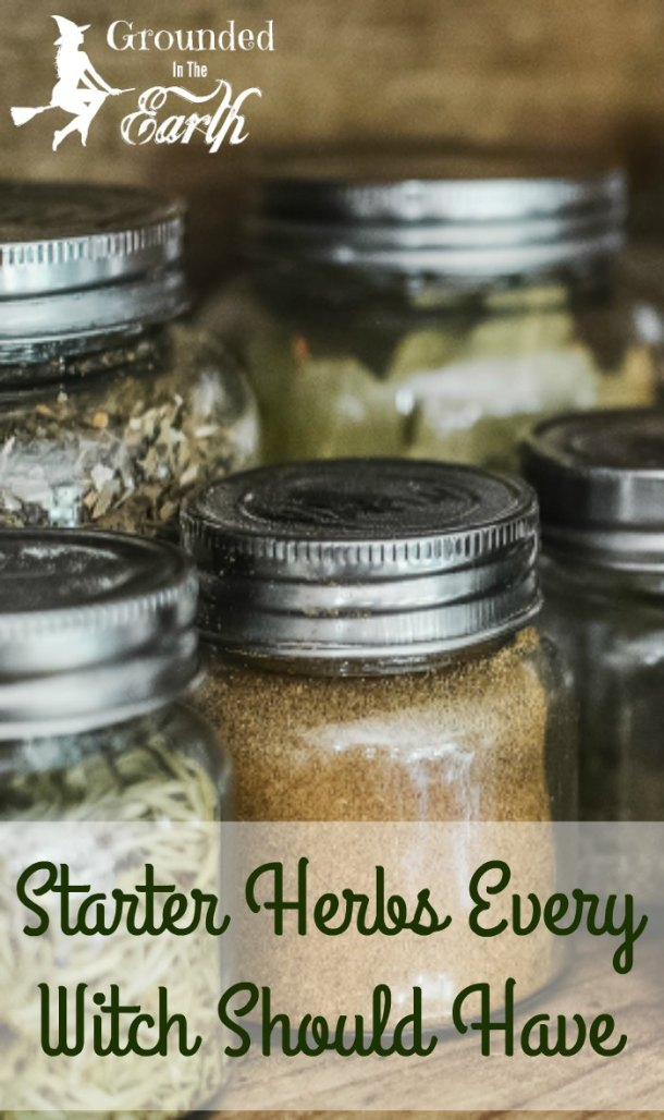 Looking to add herbs to your magic? Don't know where to start? Have a tight budget? Check out this list to get started.