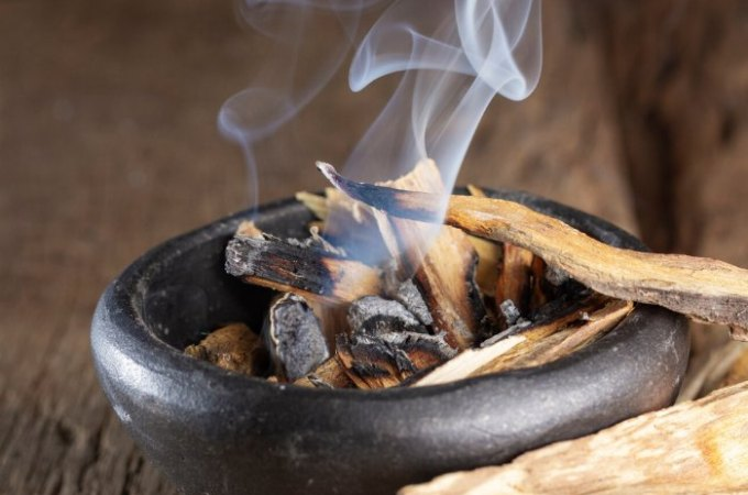 What is palo santo and how to use it