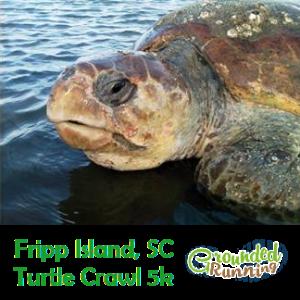 Turtle Crawl 5k Grounded Running