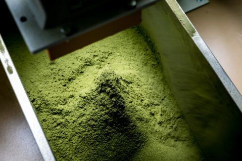 freshly ground matcha