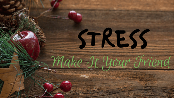 Make Stress Your Friend