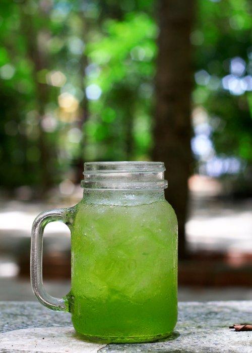 Iced Matcha Tea
