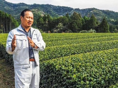Tea Master Sakamoto