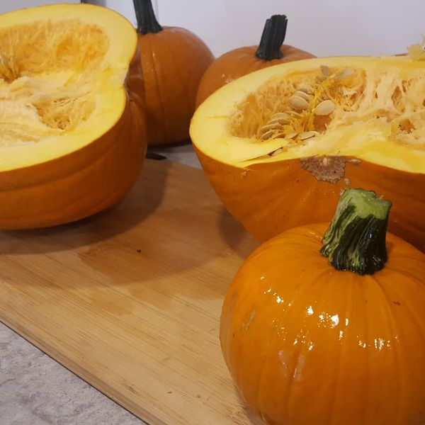 Our own Jack of All Trades and Small Sugar Pumpkins picked this morning at the farm are being roasted to make pumpkin puree for all sorts of pumpkin treats this fall.