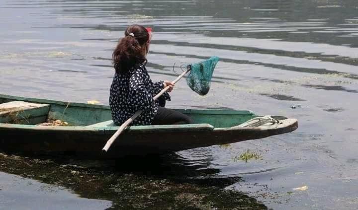 jannat dal lake cleaning 7 year old girl