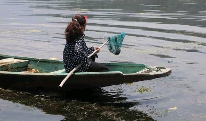 jannat dal lake cleaning 7 year old girl