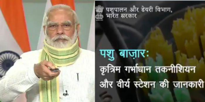 PMMSY : क्या है 'प्रधानमंत्री मत्स्य सम्पदा योजना' और कैसे किसान इसकी मदद से अपनी आय दोगुनी कर सकते हैं ?