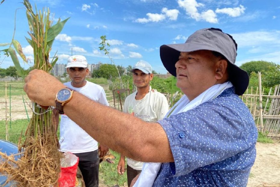 Even in Covid period, 'Peepal Baba' planted more than 1 lakh trees