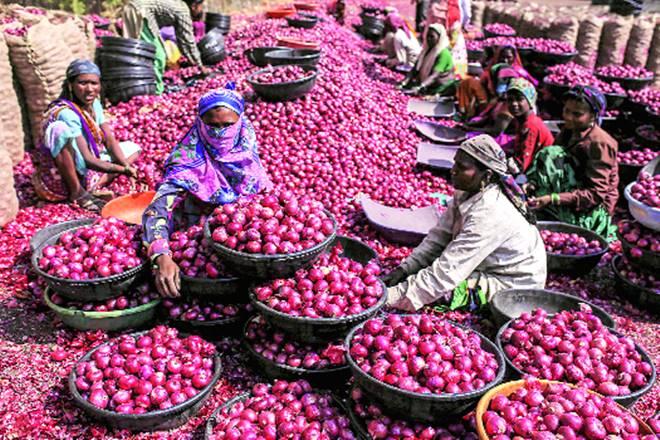 Lasalgaon Onion Market Committee