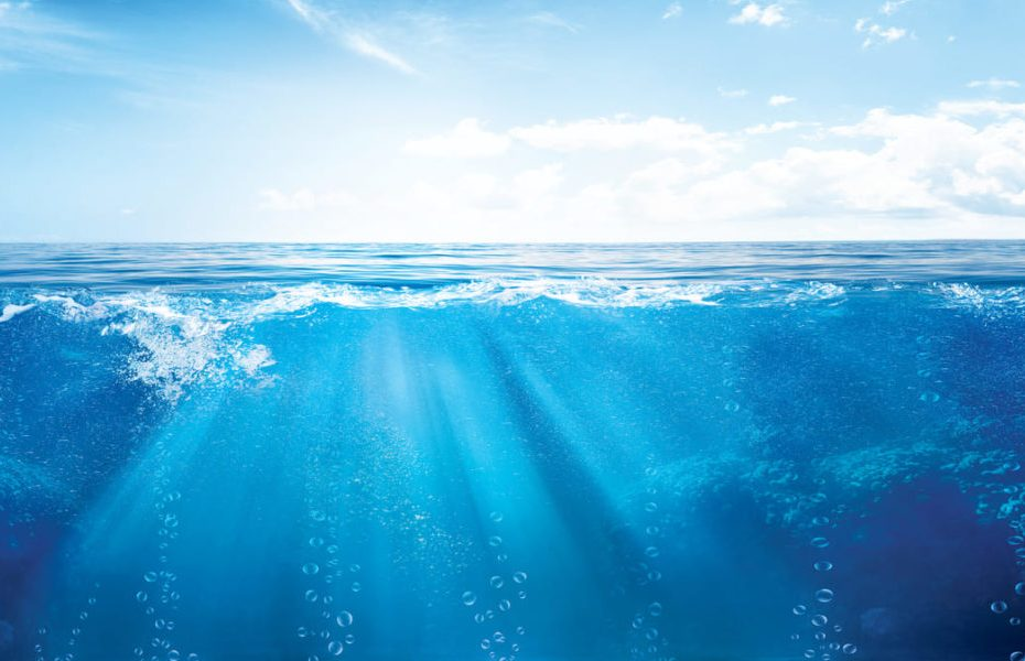 Ocean surface climate may disappear by 2100