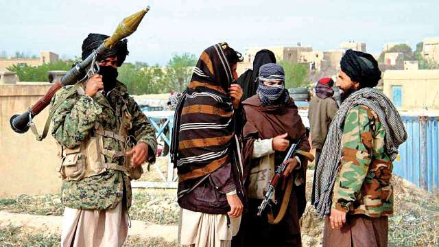 Terrorist camps set up in Afghanistan
