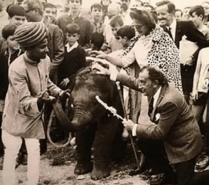 When Air India gifted baby elephant