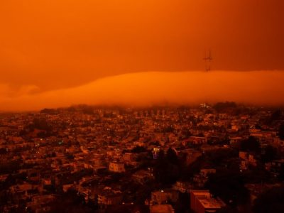 Global warming increases disease