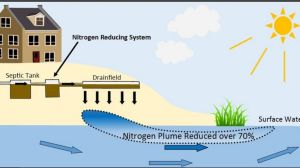 nitrogen and septic systems