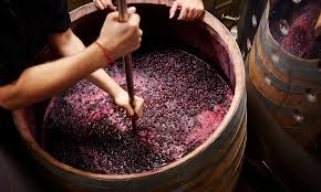 wastewater from a winery