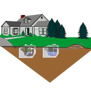 planting on a mound septic systsem