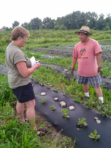 Groundswell's Incubator Farm welcomes New Americans