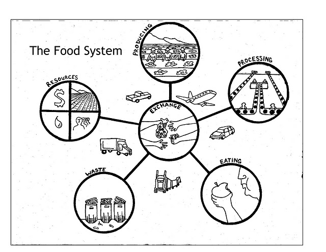Coming Soon: A Food Policy Council for Tompkins County