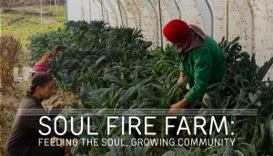Groundswell goes to Soul Fire Farm