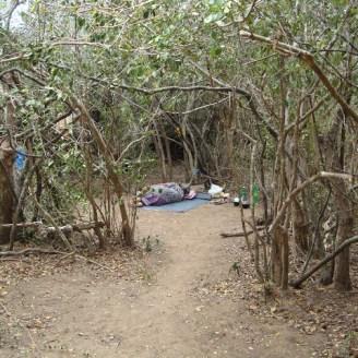 Mullikulam villagers forced to set up in jungle - Malankaadu - June 2012 - pic via NAFSO